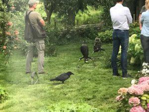 roofvogelworkshop bij HUIS130 ism Buitenbusiness